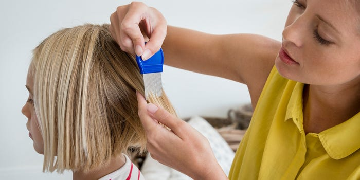 The risk of getting lice